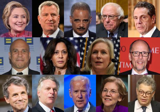 Democratic opponents