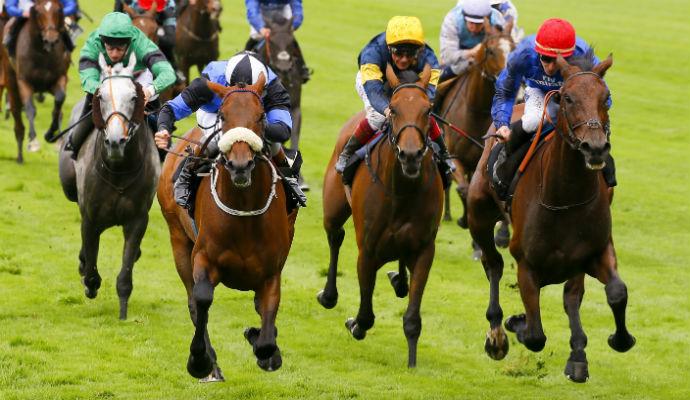 Horse Race Betting Work