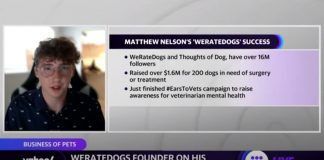 WeRateDogs founder on how he turned his Instagram page into a profitable business,